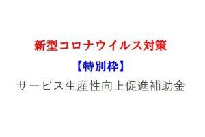 【特別枠】サービス生産性向上促進補助金